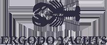 Ergodo Yachts logo